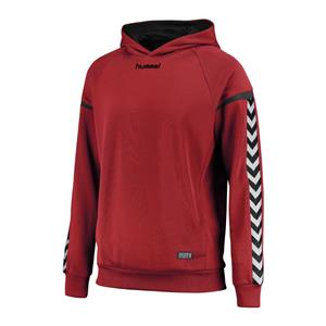 Auth. charge poly hoodie-118172